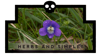 Herbs and Simples